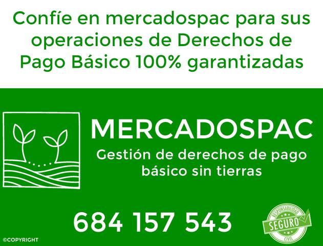 SE COMPRAN DERECHOS DE PASTOS REGIÓN 203 - foto 1