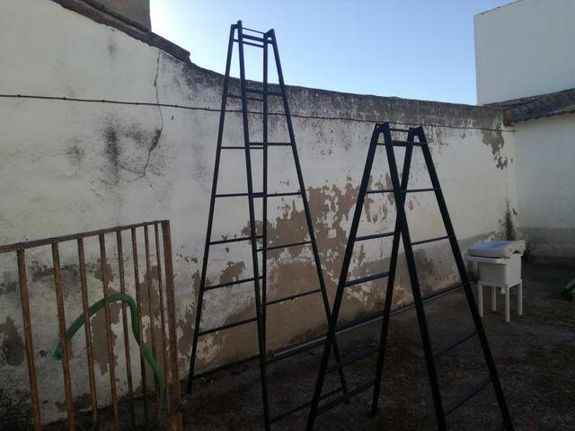 Dos Escaleras Para Recolectar Aceitunas