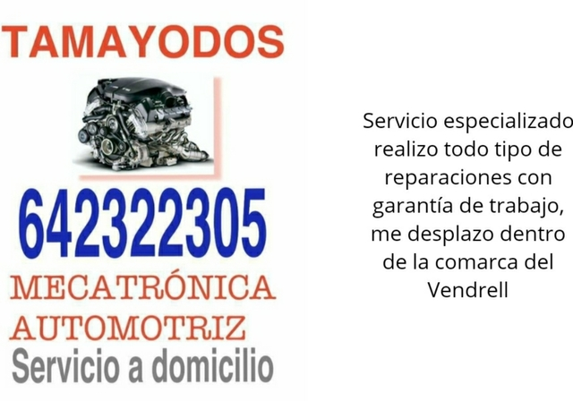 MECÁNICO DOMICILIO PROFESIONAL - foto 9
