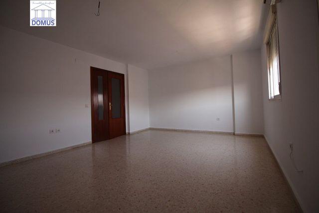 CORCHERA - DOMUS 02630 - foto 4