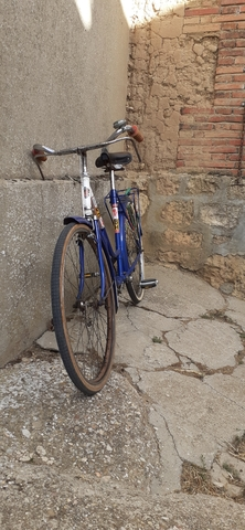 BICICLETA VARILLAS - foto 2