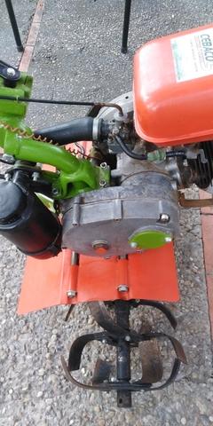 MOTOCUTOR AGRIA DE SEGUNDA MANO - foto 1