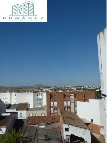 ZONA CENTRO - foto 9