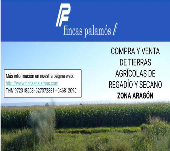 VENTA DE FINCAS RUSTICAS - foto 1