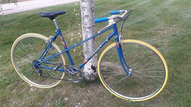 Bicicleta Torrot Paseo