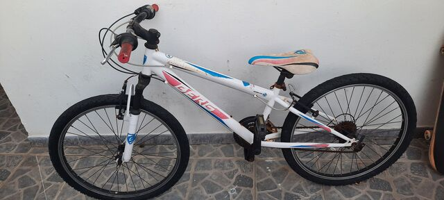 "Bicicleta 24\"""