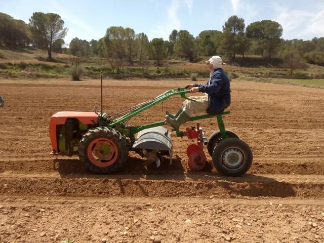 MOTOCULTOR AGRIA REMOLQUE - foto 4