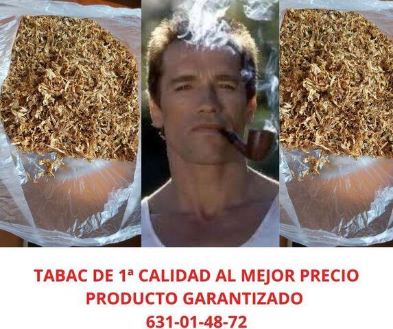 De Gran Calidad Calidad, Tabac, , , , , , , , , , ,
