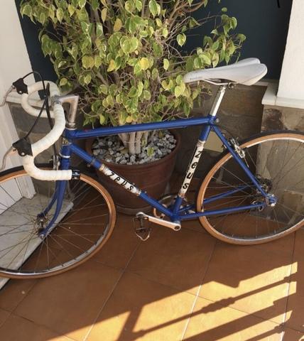 Bicicleta Retro Zeus