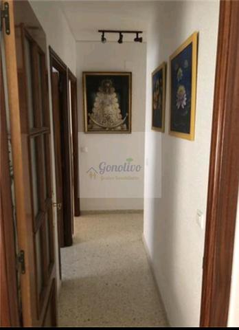 ZONA PLAZA DE TOROS - CRISTOBAL COLON - foto 9