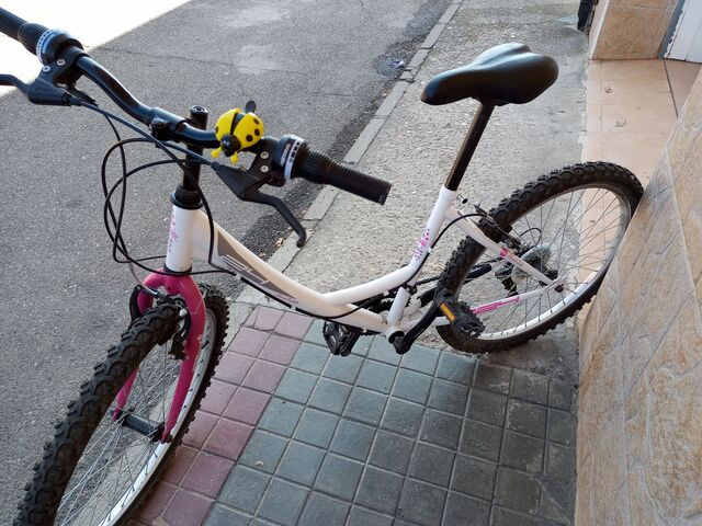 BICICLETA PARA NIÑA DE 24\\\\\\\\ - foto 1