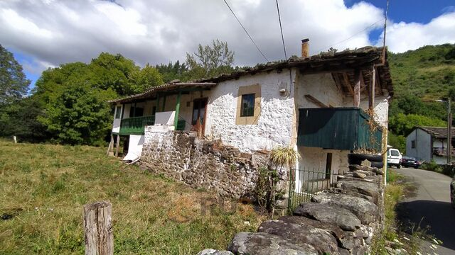 CABAÑA VIVIDORA EN VEGA DE PAS.  - foto 3