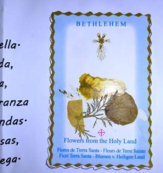 Tarjeta Adoracion Flores Tierra Santa Ni