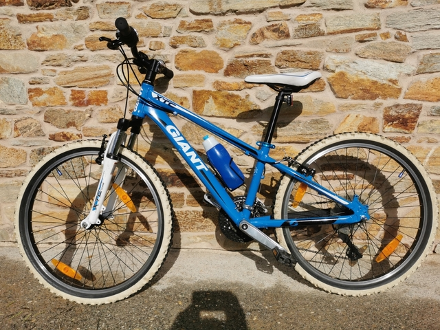 "Bici Giant 24\"""