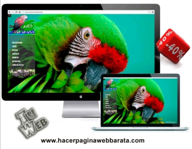 DISEÑO WEB ALMERIA - foto 3