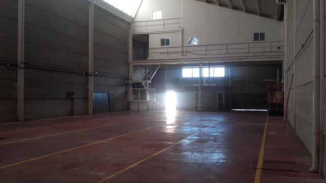 ARAFO - foto 3
