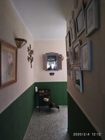 SAN RAFAEL - foto 8