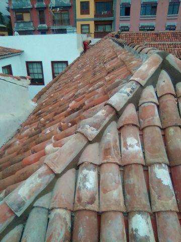 LIMPIEZA DE FINCAS EN LA GOMERA - foto 1