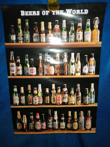 Póster Bebidas Del Mundo
