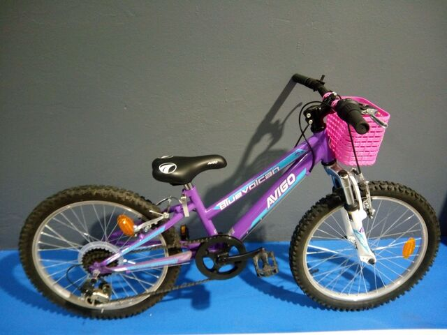 Bicicleta 20\'