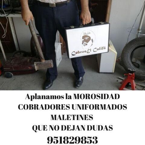 DESOKUPAMOS Y REUBICAMOS SEVILLA - foto 1