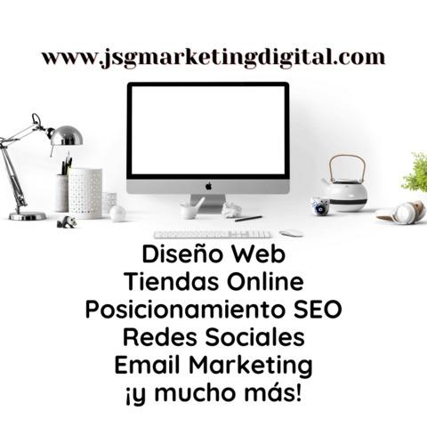 DISEÑO WEB PROFESIONAL - LOW COST - foto 1