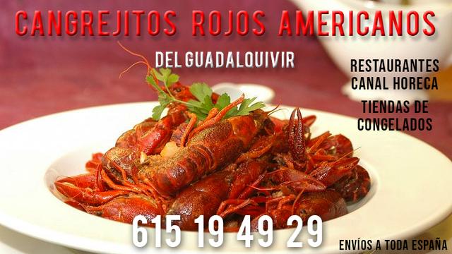 COMERCIAL ALIMENTACIÓN ZONA AXARQUÍA - foto 2