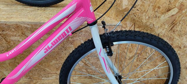 BICICLETA 26 ACERO COLOR ROSA - foto 5
