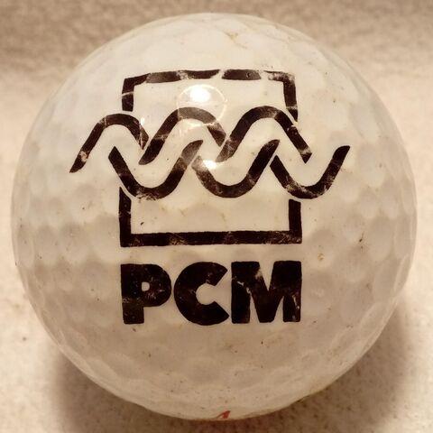 PELOTA DE GOLF PCM - foto 1