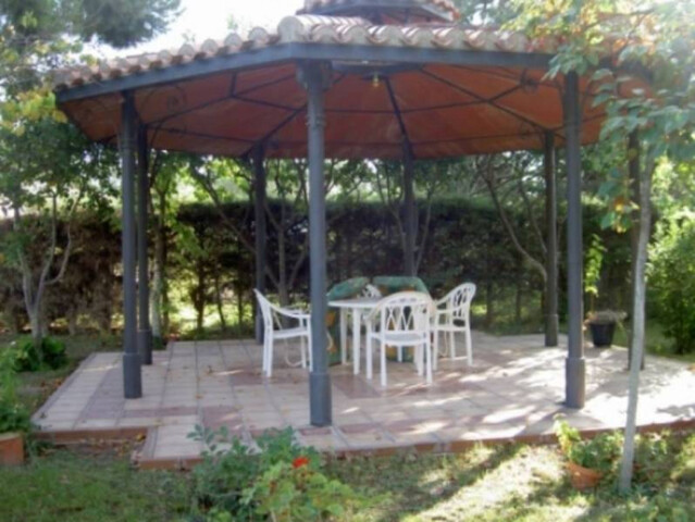 ZONA LA PULGOSA - foto 5