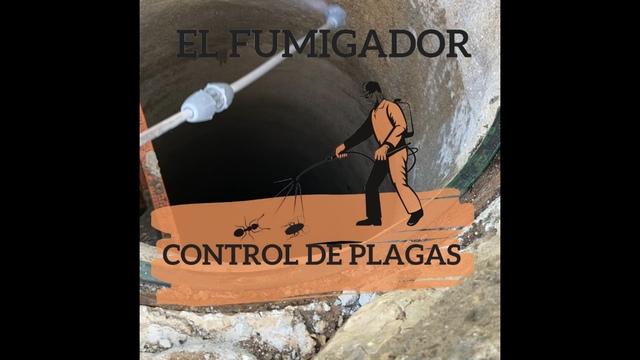 EL FUMIGADOR CONTROL DE PLAGAS EN MALAGA - foto 4