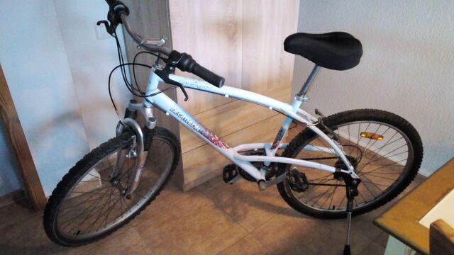 Vendo Bici Adulto Talla L