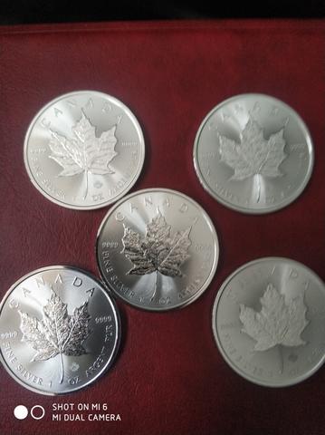 Lote Monedas Plata 1 Onza Maple Canada
