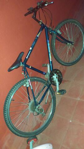 Vendo Bici Grande