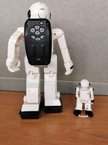 opțiuni cu un robot)