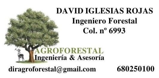 INGENIERO FORESTAL - foto 1