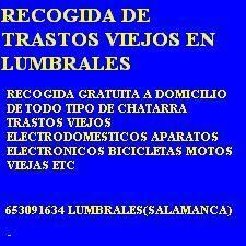 RETIRADA GRATUITA DE TRASTOSEN LUMBRALES - foto 1