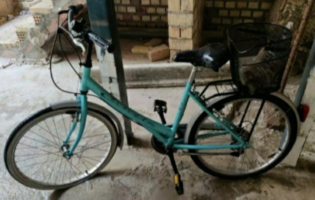 Bicicleta Adulto Mujer