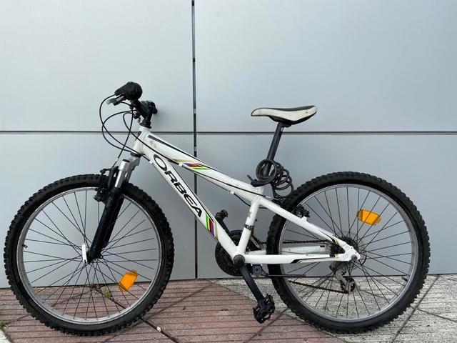 Bicicleta Montaña Orbea Mx Team 24