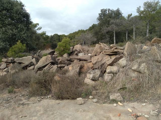 Piedra De Desmonte.