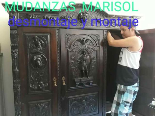 MUDANZAS Y DESMONTAJE Y MONTAJE - foto 6
