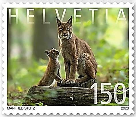 Infosellos Vende Suiza Usado 2020, Fauna
