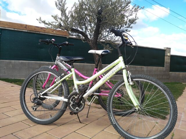 Bicicletas De Montaña Con Rueda De 24