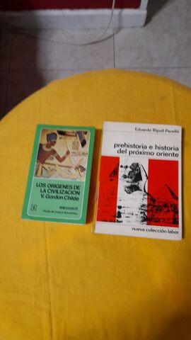 LOS ORIGENES DE LA CIVILIZACION - foto 1