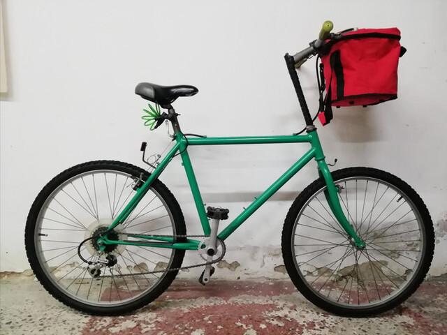 Bici Orbea Sheepa
