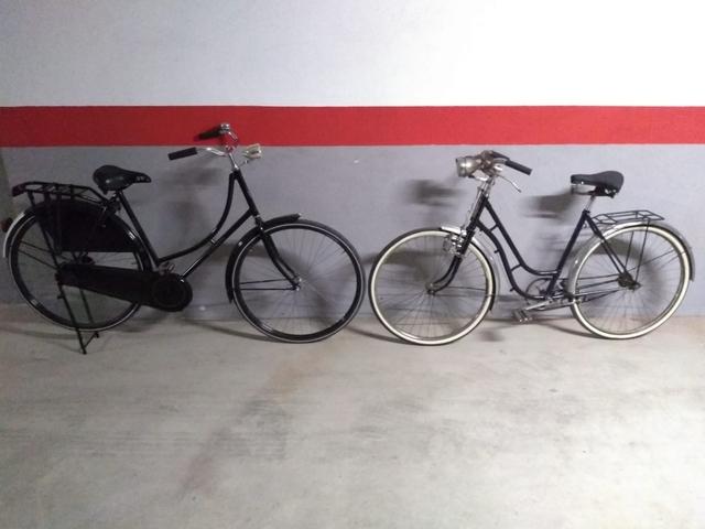 Bicicleta Orbea Varillas Y Holandesa.