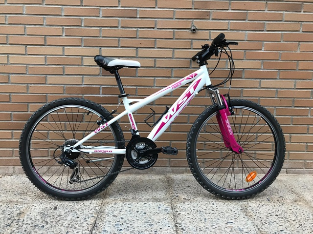 """Bicicleta De Montaña Wst Sniper 24"""""""