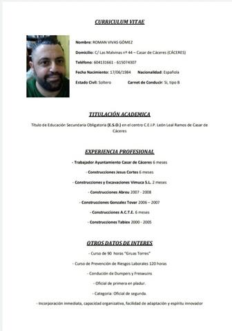 SE OFRECE ALBAÑIL PARA HACER REFORMAS - foto 6