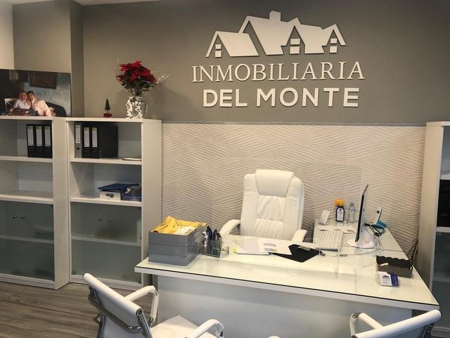 INMOBILIARIA DEL MONTE - foto 3