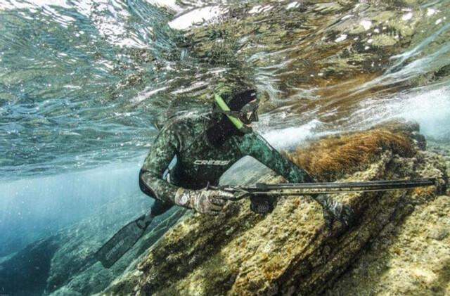 Grupo De Pesca Submarina En Almería